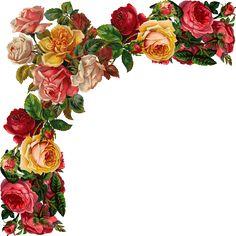 Glanzbilder - Victorian Die Cut - Victorian Scrap - Tube Victorienne - Glansbilleder - Plaatjes : Blumenranken - Tendrils of flowers - Vrilles de fleurs