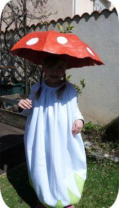 déguisement champignon4