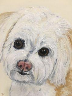 custom pet portrait pet painting maltipoo painting paint my dog maltipoo things maltipoo art maltese art maltipoo owner gift maltipoo decor by MoonbeamsBearDreams on Etsy