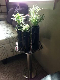 My Version of Self-Watering Wine Bottle Planter-used a Generation Green (g2) Bottle Cutter from Amazon.  Cutter was easy to use.