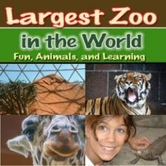 Guess where the largest zoo in the world is found? Omaha!! Check out all the animals, the desert dome, the jungle, the aquarium and more.