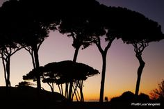 Un meraviglioso tramonto condiviso dall'agriturismo Villa Toscano - ToscanoGoloso.