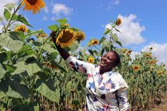Klimaathulp aan Afrika   Suidafrika weblog Africa