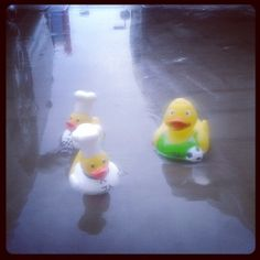 Three JA #travelducks enjoying the odd rainy day in Dubai on 21st November 2013. Thanks to @Megan Castang for this shot!