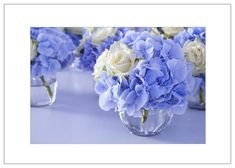 Blaue Hortensien – Bild 6 Just make blue: there are no blue hydrangea varieties, they are pink hydrangeas that grow on acid soil into a blue shell … Periwinkle Wedding, Blue Wedding, Elegant Wedding, Periwinkle Blue, Wedding Cake, Wedding Dress, Hortensia Rose, Wedding Bouquets, Wedding Flowers