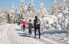 Skilangläufer in der Hochrhön
