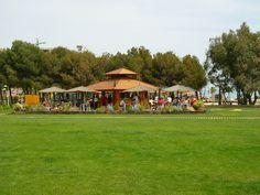 Marina d'Or Apartamentos - Chiringuitos en la playa Costa, Dolores Park, Travel, Beach Bars, Vacations, Apartments, Cities, Beach, Viajes