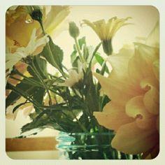 Flowers from my backyard. Backyard, Flowers, Plants, Yard, Backyards, Flora, Plant, Royal Icing Flowers, Flower