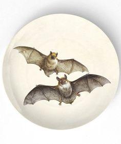 bats  II