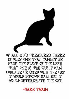 Cat Quote by Mark Twain Framed Artwork by TheWordAssociation