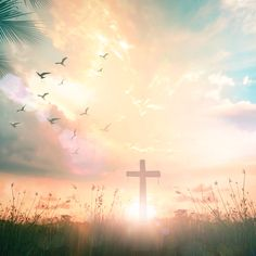 Joy Comes in the Morning: How Psalm Celebrates Resurrection Church Backgrounds, Christian Backgrounds, Wallpaper Backgrounds, Cross Pictures, Jesus Pictures, Jesus Loves Us, God Loves Me, Verses About Joy, Foto Montages