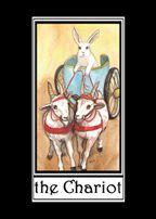 The Chariot - Rabbit Tarot - Nakisha Vander-Hoeven self published 2010