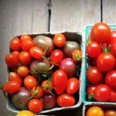 Estimating Yields and Crop-Planting Area for Your Home Garden