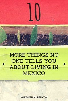 Ten MORE things no one tells you about living in Mexico. Essential reading if you're thinking of moving to Mexico and want to know about Mexican culture, food and habits.