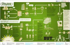 27+ Beautiful Examples of Infographics