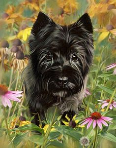 Exact replica painting of a beloved carin terrier