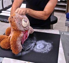 Teddy Bear Roll Out. Artwork: Geoffrey Ricardo