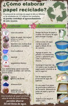¿Cómo hacer papel reciclado? #infografia #RetaTuLadoVerde    www.verdeate.com