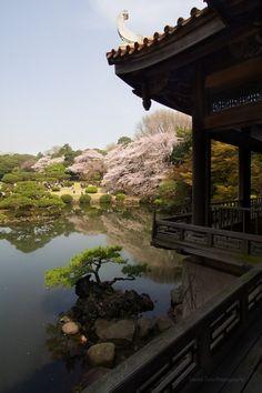 Japanese gardens - jardins japonais ! Superbe - http://www.facebook.com/pages/Les-beautés-de-la-nature/206036972817790