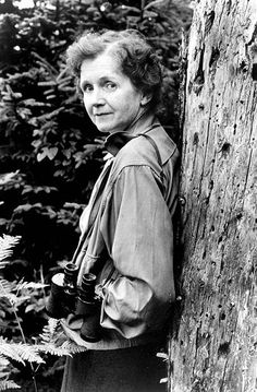Man's attitude toward nature is today critically important simply because we have now acquired a fateful power to alter and destroy nature. But man is a part of nature, and his war against nature is inevitably a war against himself. --Rachel Carson