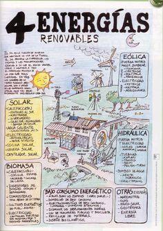 Conoce estos 4 tipos de Energías Renovables.
