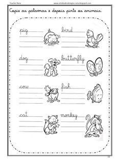 Atividades de Inglês: ANIMALS