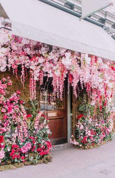 Colorful Flowers, Spring Flowers, Pretty In Pink, Beautiful Flowers, Foto Top, Chelsea Garden, London Restaurants, Flower Aesthetic, Amazing Gardens
