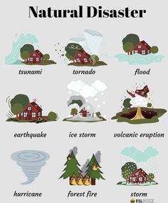 Educational infographic : The natural world Nature can refer to the phenomena of the physical world and a