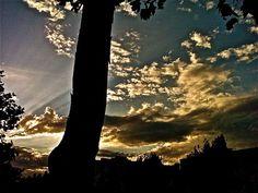 Beautiful sun rays, southern California.