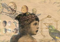 The Aviary  by Laura Tringali Holmes, via Flickr  5x7 glued (not digital) collage.