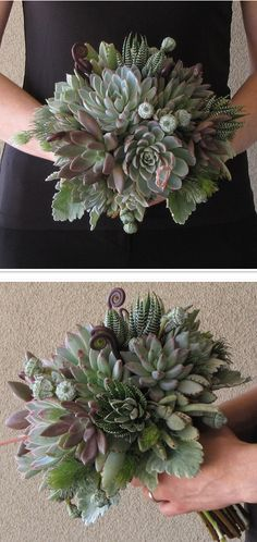 I've recently fallen in love with succulents.  I need to put some in my yard ASAP.  This is just a gorgeous succulent bouquet by floral verde