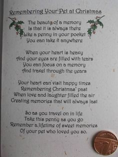 PET DOG / CAT *CHRISTMAS* Remembrance card with poignant verse and keepsake This Christmas will be so hard without my Bertie-boy. Animal Poems, Dog Poems, Animal Quotes, Christmas Poems, Christmas Cats, Christmas Ornament, Ornaments, Dog Quotes Love, Pet Quotes
