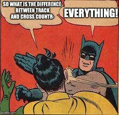 Batman Slapping Robin meme that I made. :P