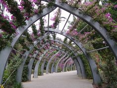 flower tunnel - Modern & Architecture Background Wallpapers on Desktop Nexus (Image Architecture Background, Landscape Architecture, Organic Architecture, Old Garden Gates, Tickets To Italy, Space Place, Garden Bridge, Beautiful Places, Outdoor Structures