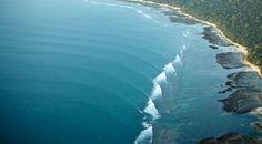 G-Land Joyo's Surf Camp is a Surf Resort
