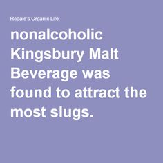 nonalcoholic Kingsbury Malt Beverage was found to attract the most slugs.