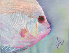 """ND-089-1,  """"Nydia Dominguez"""",  """"Angel Fish"""" ACEO $10 Larger sizes available up to 8.5x11"""""""