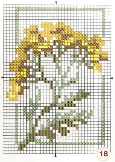 Gallery.ru / Фото #20 - Лекарственные растения Моя вышивка - Mosca