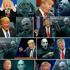 Is Donald trump, Lord Voldemort? Magia Harry Potter, Mundo Harry Potter, Harry Potter Puns, Harry Potter Tumblr, Harry Potter Cast, Harry Potter Theme, Harry Potter Universal, Harry Potter World, Harry Potter Funny Pictures