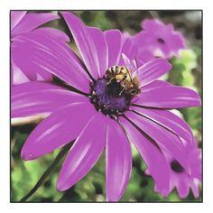 #flower - #Honey Bee On A Spring Flower Wood Print