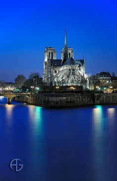 Notre-Dame Cathedral Paris | See More Pictures | #SeeMorePictures