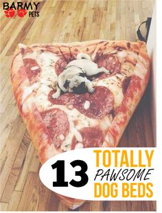 13 totally awesome dog beds that will really spoil your fur kid! Check them out! #dog #puppy #bed