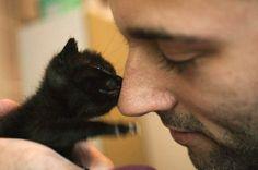 Love guys w/ kitties.