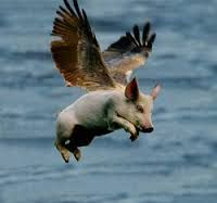 240 Best When Pigs Fly Images Flying Pig Pig Art Piglets
