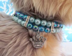 Blue Prince or Princess Dog/Cat Collar Necklace, Dog/Cat Bling Collar, Dog/Cat Pearl Collar, Dog/Cat Rhinestone Collar, Dog/Cat Crown Collar Dog Accesories, Pet Accessories, Dog Jewelry, Beaded Jewelry, Crystal Jewelry, Bridal Jewelry, Jewelry Art, Silver Jewelry, Dog Necklace