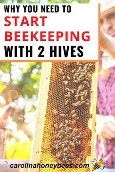 Ok everyone says you really need to start beekeeping with 2 hives instead of 1?  Why?  Are they just trying to sell you more stuff?  #carolinahoneybees #beginnerbeekeeping #howmanybeehives