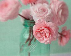 Pink Ranunculus Photograph Flower Bouquet Still Life por JudyStalus