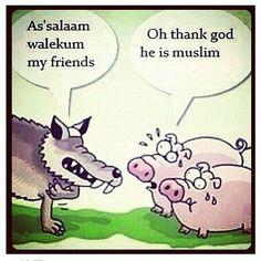 Muslim Wolf Pig Scared...
