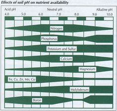 Effects of soil pH on nutrient availability for peach trees