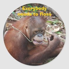 Flossing Teeth Dental Care stickers Fluoride originates from an element in the earth's soil called Toddler Tooth Decay, Dental Facts, How To Prevent Cavities, Teeth Bleaching, Gifts For Dentist, Dental Surgery, Architecture Tattoo, Healthy Teeth, Orangutan